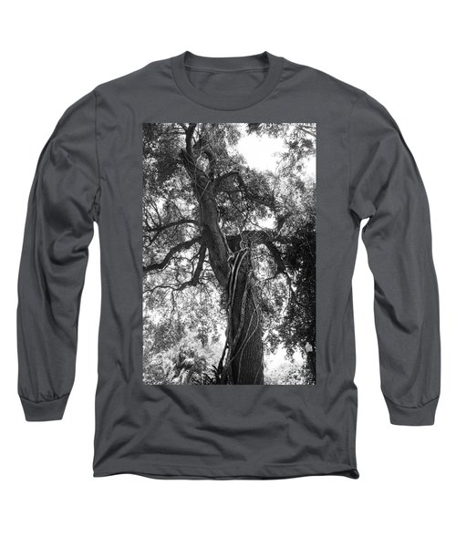 Tree Long Sleeve T-Shirt