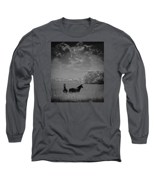 Two Horses Long Sleeve T-Shirt by Bradley R Youngberg