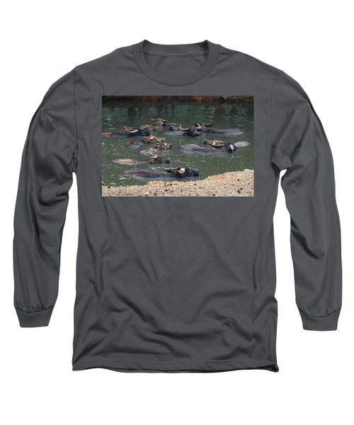 Water Buffalo Long Sleeve T-Shirt by Chris Flees