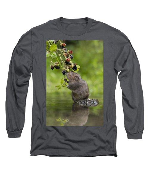Water Vole Eating Blackberries Kent Uk Long Sleeve T-Shirt