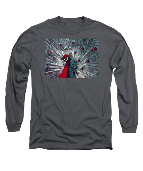 What If - A Fanciful Peacock Long Sleeve T-Shirt by Ann Horn