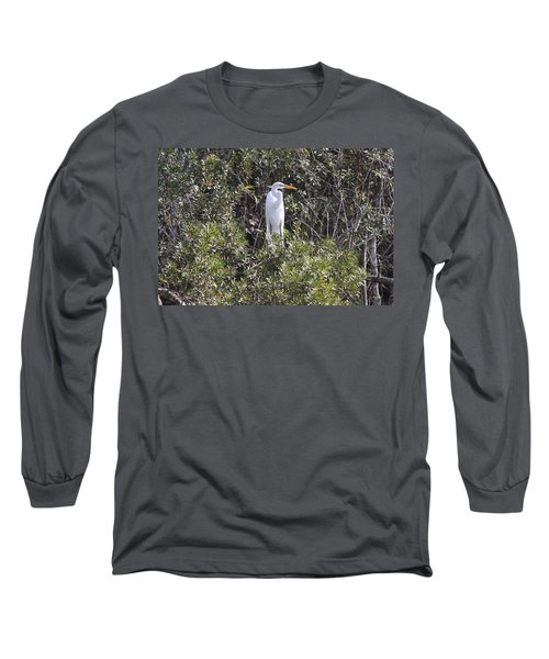 Long Sleeve T-Shirt featuring the photograph White Egret In The Swamp by Christiane Schulze Art And Photography