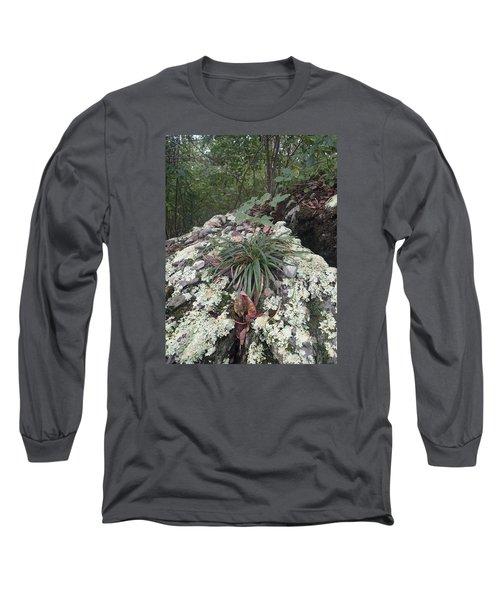 White Lichen Long Sleeve T-Shirt