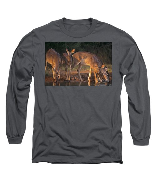 Whitetail Deer At Waterhole Texas Long Sleeve T-Shirt by Dave Welling