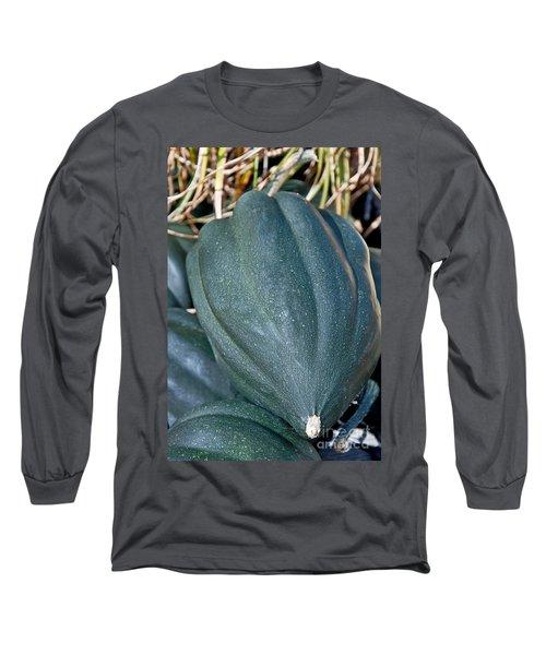 Whole Acorn Squash Art Prints Long Sleeve T-Shirt