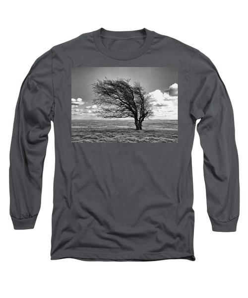 Windswept Tree On Knapp Hill Long Sleeve T-Shirt