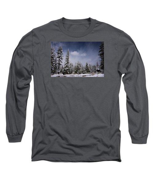 Winter Again Long Sleeve T-Shirt