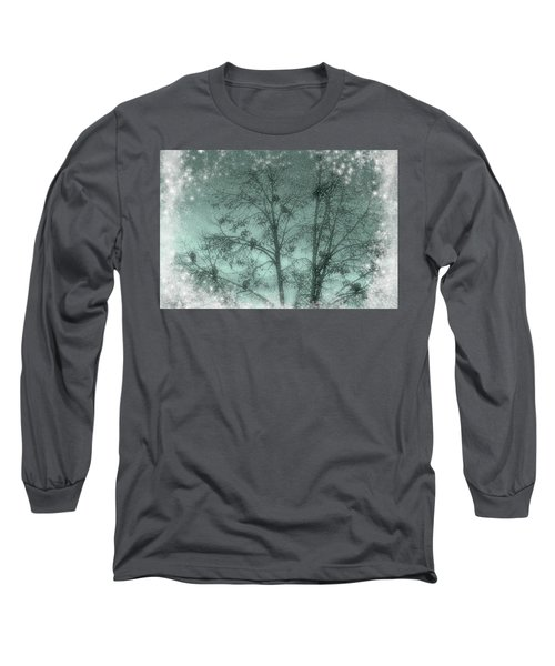 Winter Doves Long Sleeve T-Shirt by Diane Alexander