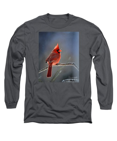 Winter Morning Cardinal Long Sleeve T-Shirt by Nava Thompson