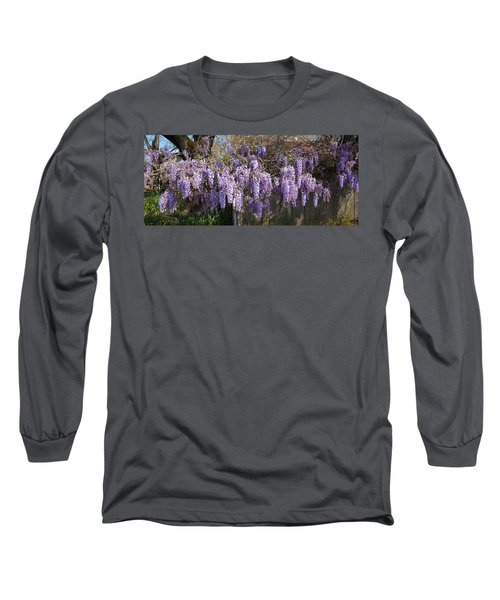 Wisteria Flowers In Bloom, Sonoma Long Sleeve T-Shirt
