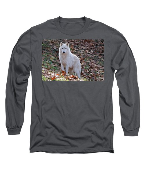 Wolf In Autumn Long Sleeve T-Shirt