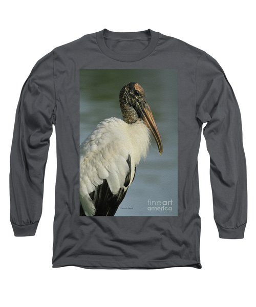 Wood Stork In Oil Long Sleeve T-Shirt