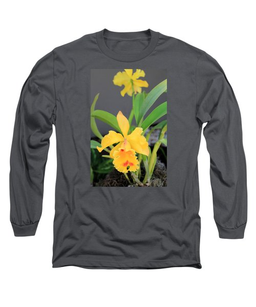 Long Sleeve T-Shirt featuring the photograph Yellow Cattleya Orchid by Rosalie Scanlon
