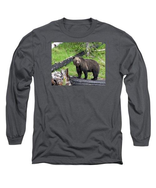 Yellowstone Grizzlies 2 Long Sleeve T-Shirt by George Jones