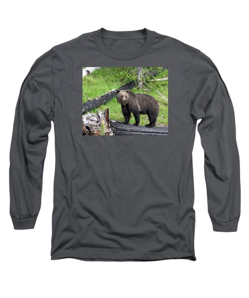 Yellowstone Grizzlies 2 Long Sleeve T-Shirt