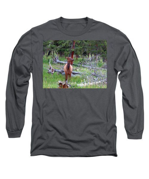 Yellowstone Moments. Doe Long Sleeve T-Shirt