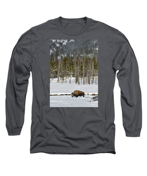 Yellowstone Winter Long Sleeve T-Shirt by Alan Toepfer