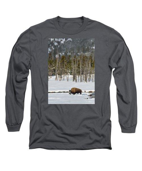 Yellowstone Winter Long Sleeve T-Shirt