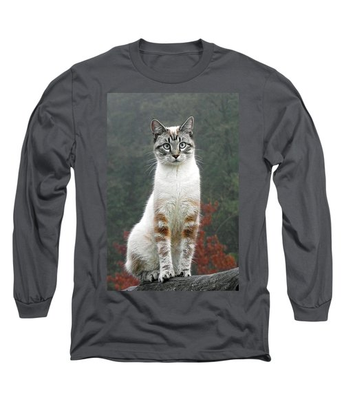 Zing The Cat Long Sleeve T-Shirt