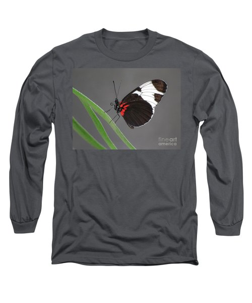 Long Sleeve T-Shirt featuring the photograph Butterfly  by Tam Ryan