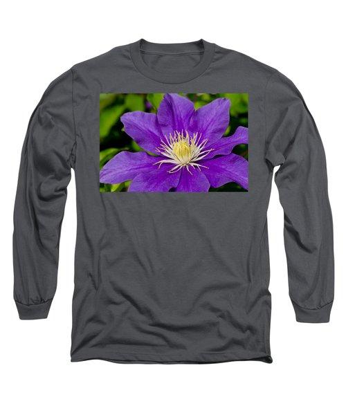 Purple Clematis Flower Long Sleeve T-Shirt