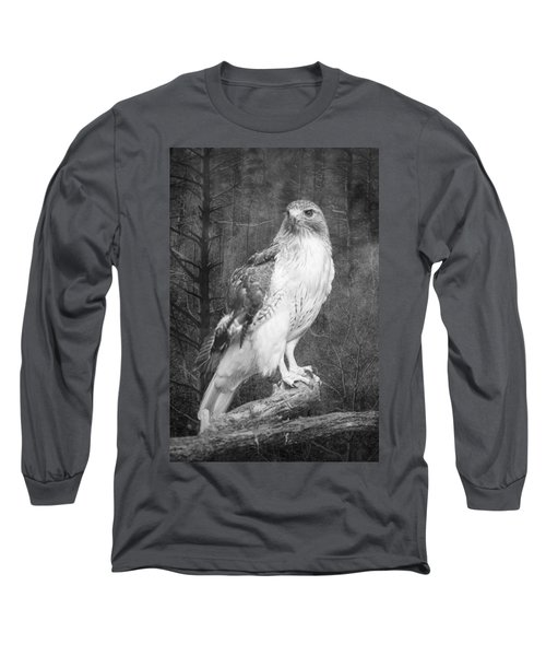 Red Tailed Hawk Perched On A Branch In The Woodlands Long Sleeve T-Shirt
