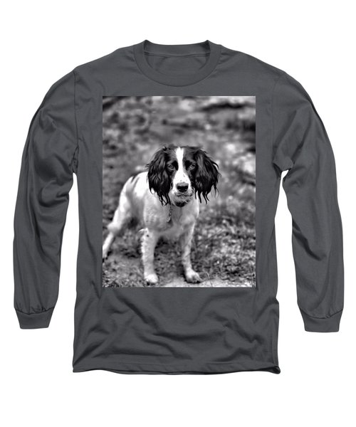 Springer Spaniel Long Sleeve T-Shirt