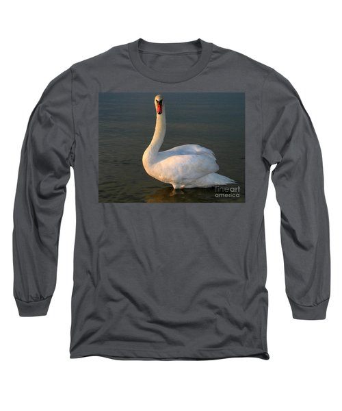 Swan Long Sleeve T-Shirt by Odon Czintos