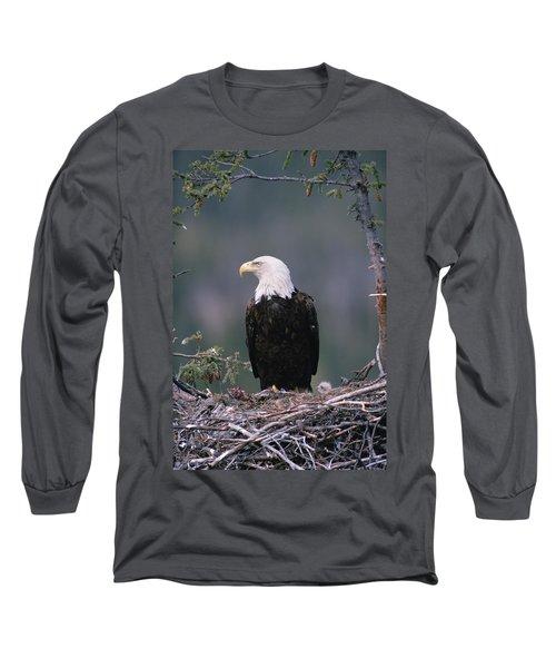 Bald Eagle Haliaeetus Leucocephalus Long Sleeve T-Shirt
