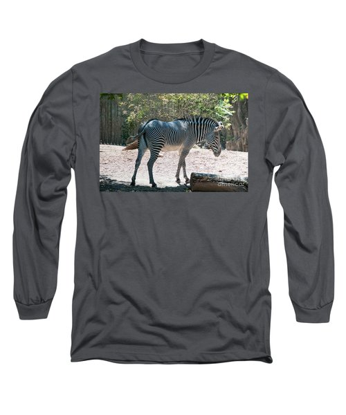 Lincoln Park Zoo In Chicago Long Sleeve T-Shirt