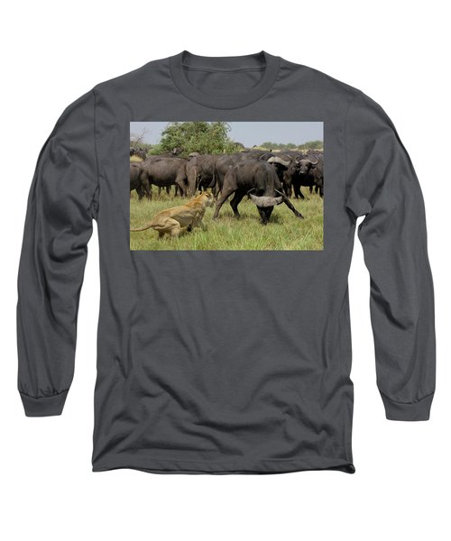 African Lion Panthera Leo Fending Long Sleeve T-Shirt
