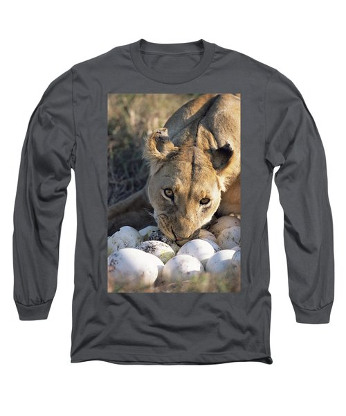 African Lion Panthera Leo Raiding Long Sleeve T-Shirt