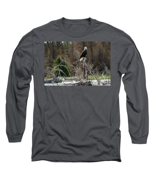 American Eagle On Snake River Long Sleeve T-Shirt by Living Color Photography Lorraine Lynch