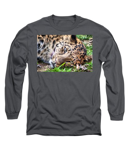 Amur Leopard Long Sleeve T-Shirt by Lynne Jenkins