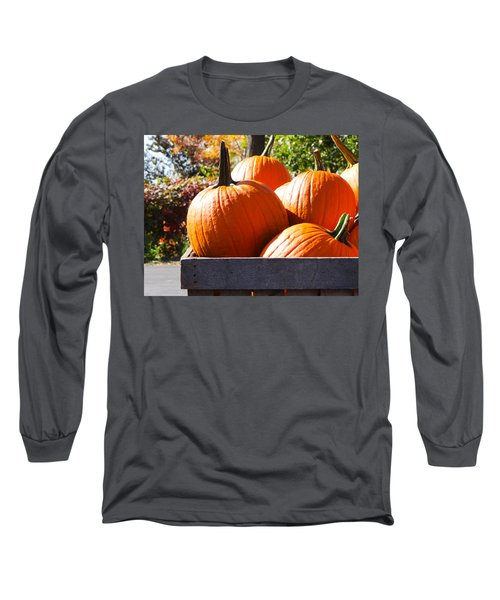Autumn Harvest Long Sleeve T-Shirt by Julia Wilcox