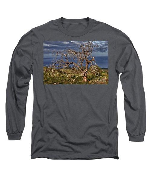 Bare Tree In Hana Maui Long Sleeve T-Shirt by Loriannah Hespe