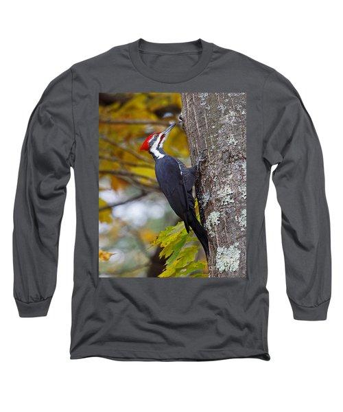 Beautiful Pileated Woodpecker Long Sleeve T-Shirt