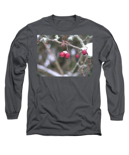 Berries In Winter Long Sleeve T-Shirt