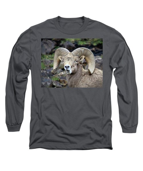 Long Sleeve T-Shirt featuring the photograph Bighorn Giant by Steve McKinzie