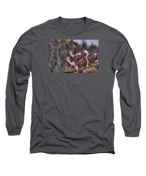 Bighorn Sheep Long Sleeve T-Shirt