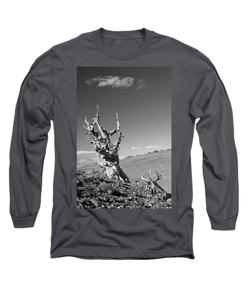 Bristlecone Pine And Cloud Long Sleeve T-Shirt
