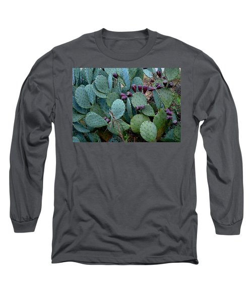 Cactus Plants Long Sleeve T-Shirt by Maria Urso