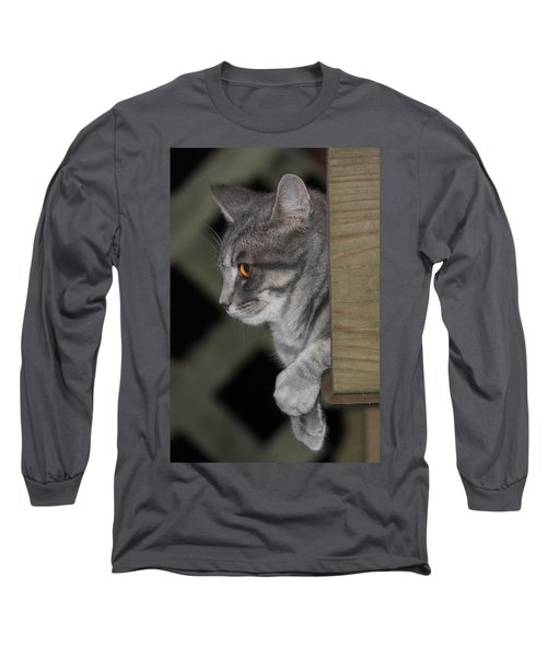 Cat On Steps Long Sleeve T-Shirt
