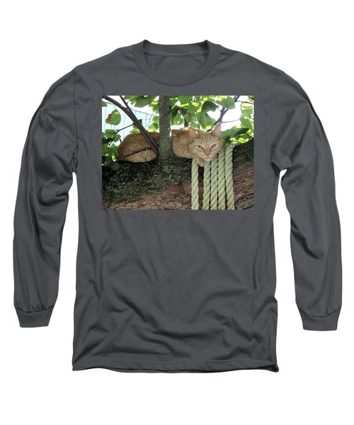 Long Sleeve T-Shirt featuring the photograph Catnap Time by Thomas Woolworth