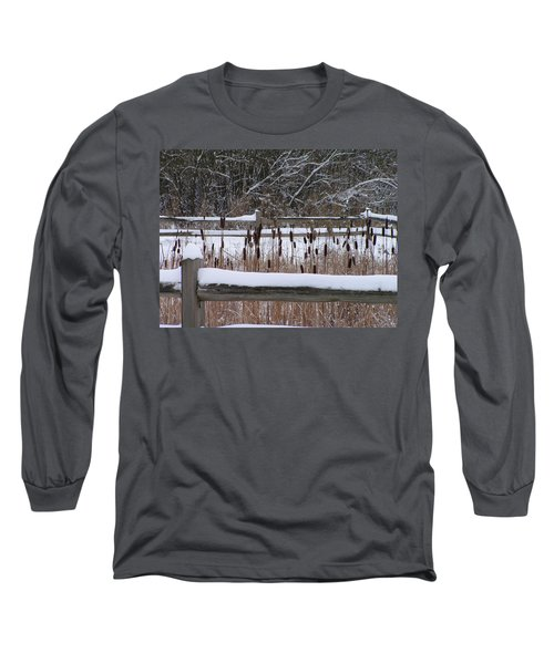 Cattails In The Pond Long Sleeve T-Shirt