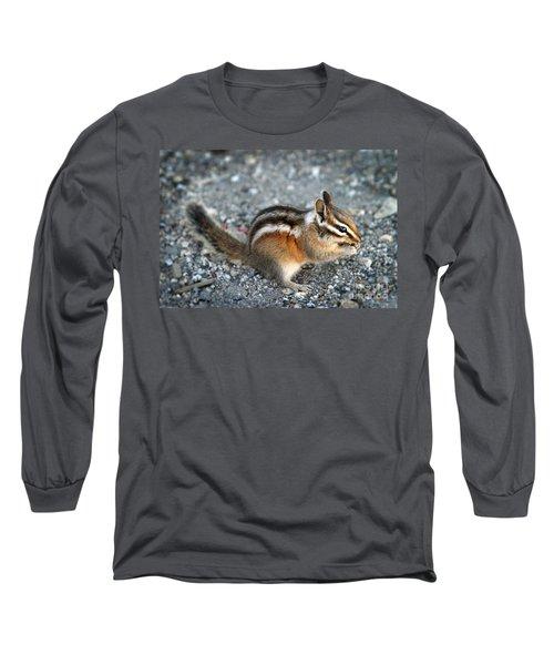 Chipmunk Long Sleeve T-Shirt by Henrik Lehnerer
