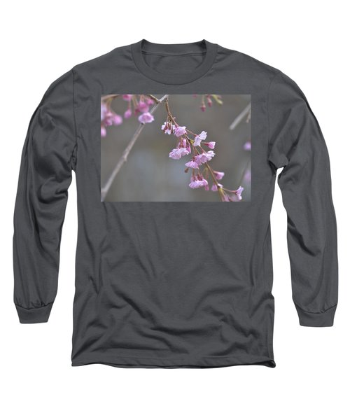 Long Sleeve T-Shirt featuring the photograph Crepe Myrtle by Lisa Phillips