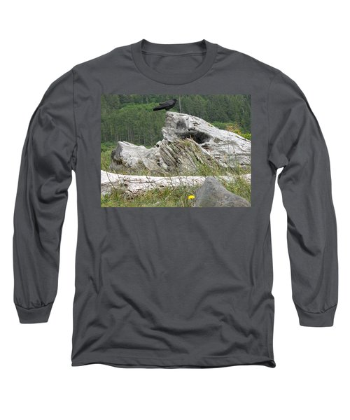 Long Sleeve T-Shirt featuring the photograph Dandelion Crow - On Oregon Coast Driftwood  by Cliff Spohn