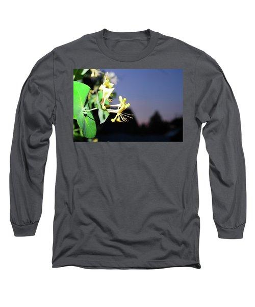Evening Sonata. Perfoliata Long Sleeve T-Shirt