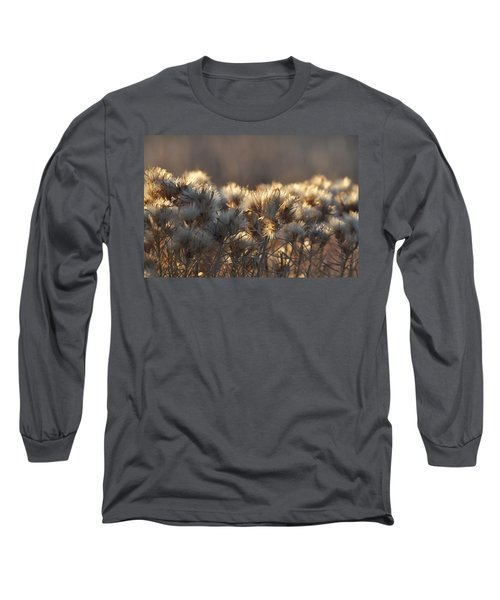 Long Sleeve T-Shirt featuring the photograph Gone To Seed by Fran Riley